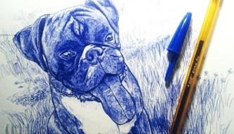 Dibujo de perro bulldog hecho a boli