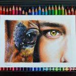 Dibujo de ojos de caballo y humano