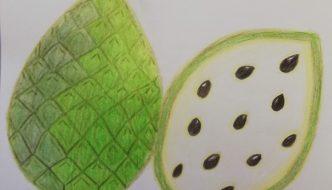Dibujo de chirimoya de Ainoa
